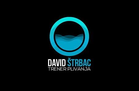 Project – David Strbac